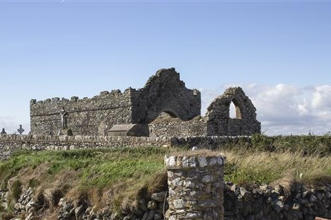 Bannow church ruins