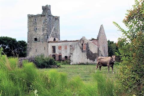 Sigginstown Castle