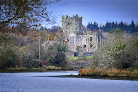 Tintern Abbey (Wexford Trails)