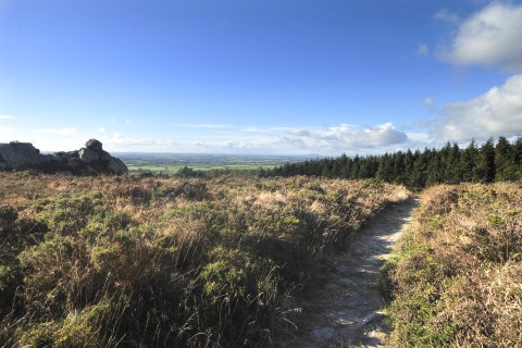 View of path on Forth Mountain