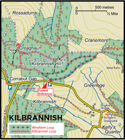 Bunclody Kilbrannish Map image