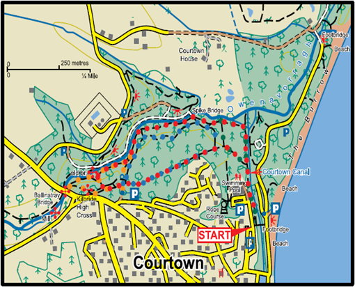 Courtown Wood Map image