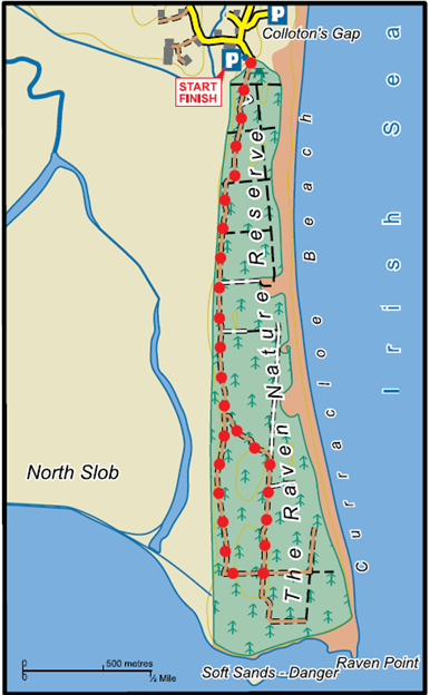 aven Point Wood Map image