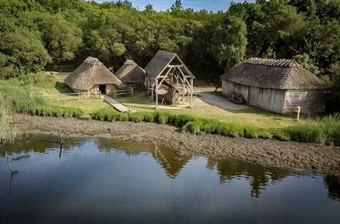 INHP Viking site