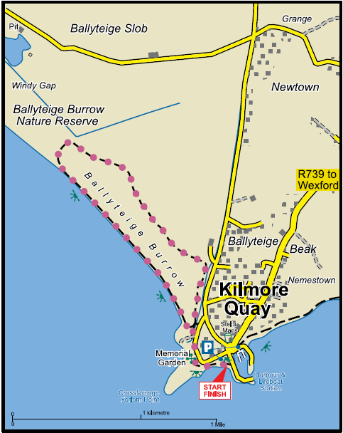 Kilmore Quay Burrow Map Image